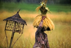 Picture of the Rice Harvest in Bali, the inspiration behind the Golden Harvest Necklace